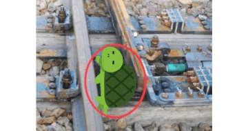 「線路に侵入したカメが脱出できるようにした」JR岡山支社の遅延防止策が優しい 画像