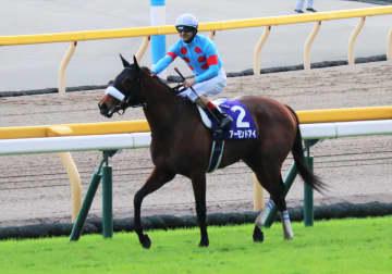大本命アーモンドアイに勝ったグランアレグリア…競馬史上最強2020年のJRA年度代表馬は?