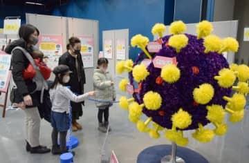 新型コロナウイルスの拡大模型が展示されている札幌市青少年科学館