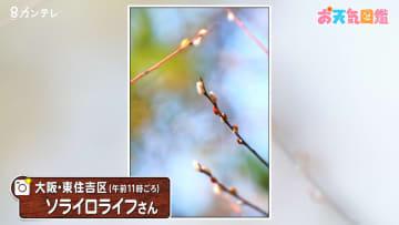 TOPICS画像
