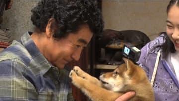 櫻井翔&相葉雅紀が犬のレスキューへ ボロボロな状態からトリミング