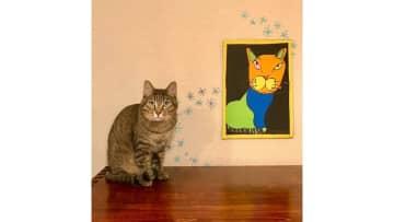 """「君の描くネコは世界で一番愛しい」7歳息子の""""アート""""に大反響…他の絵にも芸術的センスを感じる 画像"""