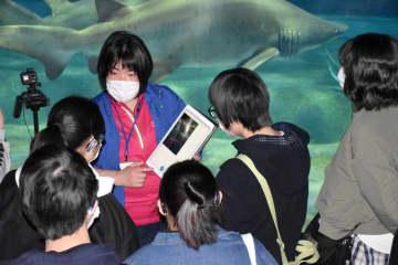 「しゃべり描きアプリ」を使ってサメの生態を解説する職員と説明を聞く水戸聾学校の生徒たち=大洗町磯浜町のアクアワールド県大洗水族館