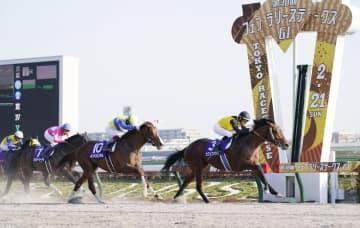 フェブラリーステークスで(先頭から)優勝したカフェファラオ、2着のエアスピネル、3着のワンダーリーデル=東京競馬場