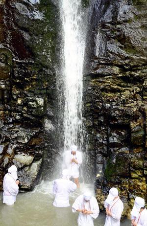 滝に打たれながら祈りをささげる参加者=中野不動尊