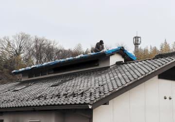 屋根瓦の応急手当てが進む山元町坂元地区の民家