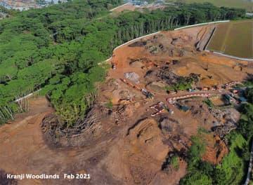【シンガポール】北部で誤って森林伐採、経緯を調査中[建設]