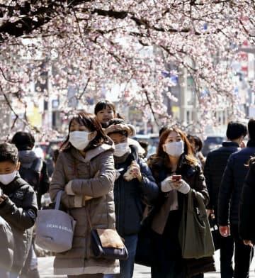 東京、2月も1万人超感染 小池知事、再増加の兆しを懸念 画像