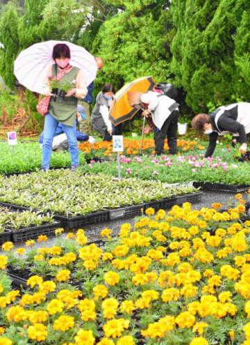 多くの来場者でにぎわったあすか園収穫祭
