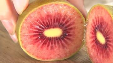 果肉が赤いキウイにハート型のイチゴ 食べてみたい新品種のフルーツ3選 画像