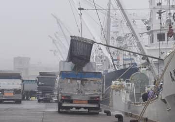 <原発処理水、海洋放出へ>千葉県内漁業者は反発 「風評被害怖い」「次世代への影響心配」