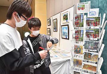 50種類のポストカードの中から、気に入った商品を探す来場者=2日、鳥取市上町の市歴史博物館