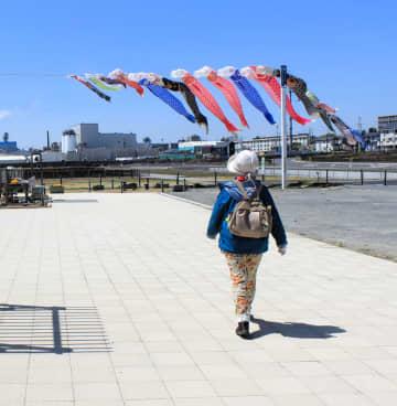 石巻南浜津波復興祈念公園の一角に掲げられているこいのぼり