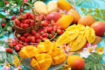 スイーツパラダイス、マンゴー食べ放題!「フルーツパラダイス」開催 画像