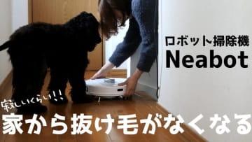 https://this.kiji.is/765878680938414080?c=675530478157071457