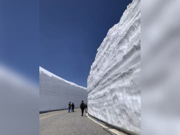 絶景!20メートルの雪の壁 50周年を迎えた立山黒部アルペンルート 今年は特別なイベントも