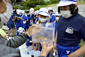 捕まえた水生生物の説明を受ける児童たち