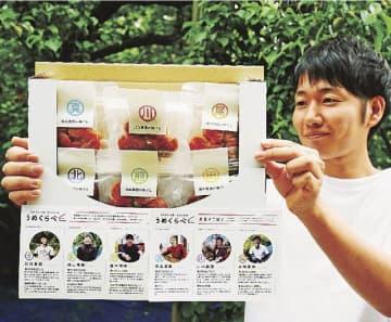 和歌山県みなべ町や田辺市の6農家の白干し梅を詰め合わせたセット