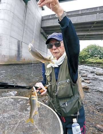 友釣りで釣れたアユ(下)=11日午前10時25分、金沢市大桑町