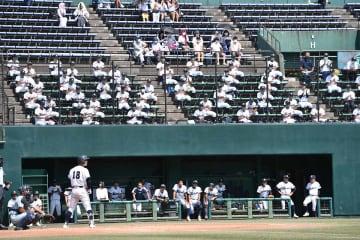 球場ごとに上限を設け、観客を入れて実施している神奈川大会=20日、大和スタジアム