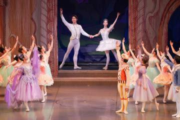 華やか衣装、優雅な舞 スワンバレエ研、水戸で40周年公演
