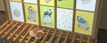 猫テーマの特別展 馬頭広重美術館