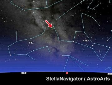 オリオン座とふたご座の間に位置する小惑星「Robohachi」=十字付近=。八戸からはここ数日の午前0時ごろ、東の低い空にあるという(八戸市児童科学館提供)