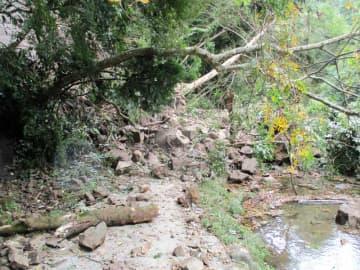 紅葉スポット・養老渓谷の遊歩道が一部通行止め 土砂崩れ、復旧めど立たず 大多喜町