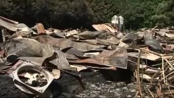 ニワトリ約2万4000羽死ぬ 鶏舎3棟全焼<岩手・一関市>