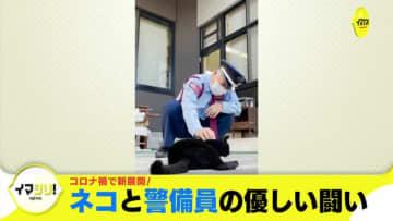 イマシリ!『コロナ禍で新展開! ネコと警備員の優しい闘い』 広島・尾道市