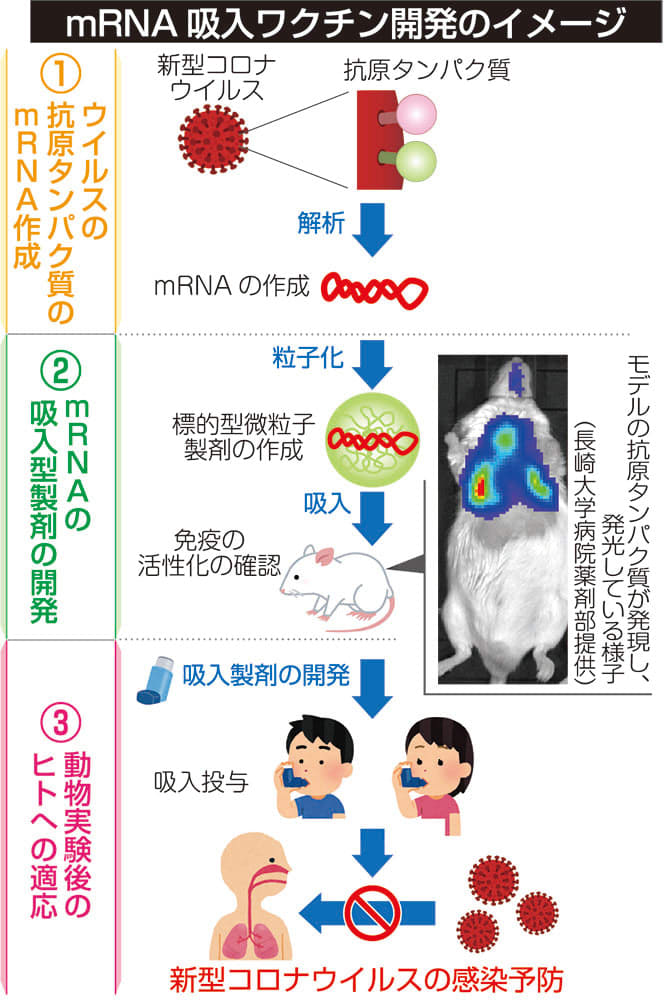 長崎 コロナ ウイルス シャープのプラズマクラスター技術が新型コロナウイルスの不活化を実証|@DIME アットダイム