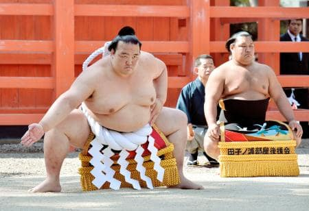横綱稀勢の里 大活躍! 相撲ブーム到来か?