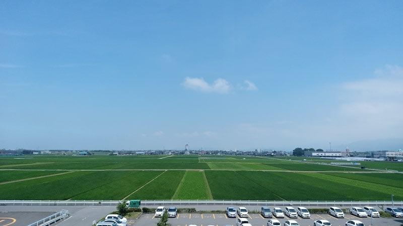 午前中から気温が30度を超えた福井県福井市=7月14日午前11時45分ごろ