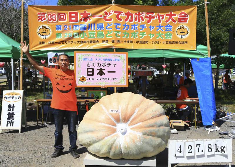 カボチャ427キロ日本一、香川 小豆島で大会