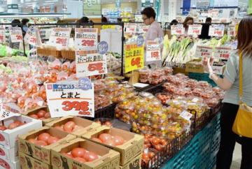 大同青果で開催された野菜品種見本市で、さまざまな野菜を試食する農業関係者ら=熊本市