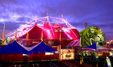 約800個のLED電球で彩られた木下大サーカスの巨大テント=17日午後6時半、宮崎市のイオンモール宮崎特設会場