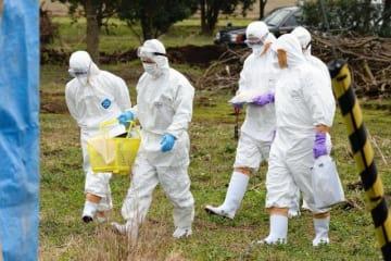 発生農場に到着し、鶏舎へと向かう疫学調査チーム=20日午前、川南町川南