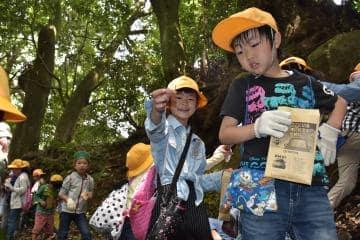 ヤマザクラの種子を探す児童たち=桜川市真壁町山尾