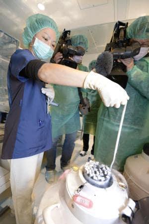 2016年2月、大阪市内のクリニックで、凍結保存された卵子を出して見せる関係者