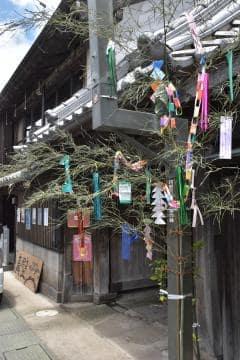「まかべ日和」の会場となる下宿通りには七夕飾りが並んでいる=桜川市真壁町真壁