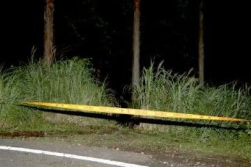 遺体が見つかった神奈川県秦野市の山林=14日未明