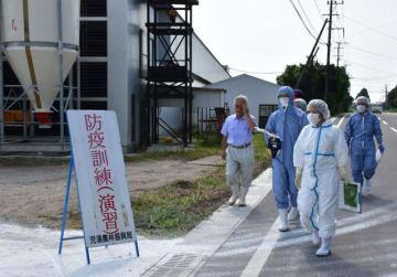 殺処分の手順などを確認するため養鶏場に入る宮崎家保の職員ら=24日午前、川南町川南の金鶏農場