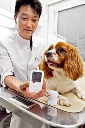 アークレイが開発したイヌ・ネコ専用の血糖測定器(京都市左京区・ひとみ動物病院)