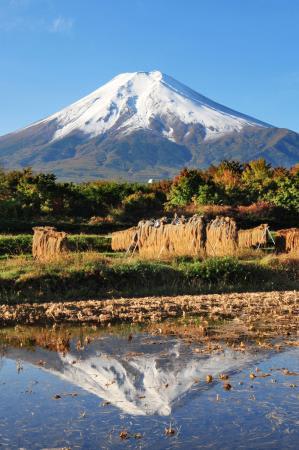 「初雪化粧」した富士山=26日午前、山梨県富士吉田市
