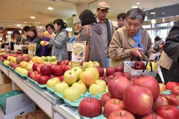 ずらりと並んだ21種類の県産リンゴを買い求める来場者