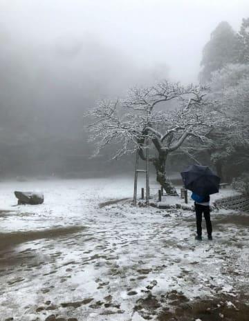 うっすらと雪化粧した金剛山の山頂付近=20日午後、奈良県御所市