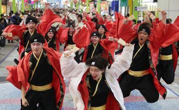 大賞を決めるファイナルステージが中止になった「第20回YOSAKOIさせぼ祭り」。全国から過去最多の202チームが参加した=佐世保市、四ケ町アーケード