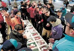 水産物の初競りで買値を示す仲買人ら=5日午前7時30分ごろ、仙台市中央卸売市場