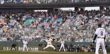 時折雨の降る中、多くのファンが駆け付けた巨人とホークスのOB戦=10日午後、宮崎市・KIRISHIMAサンマリンスタジアム宮崎