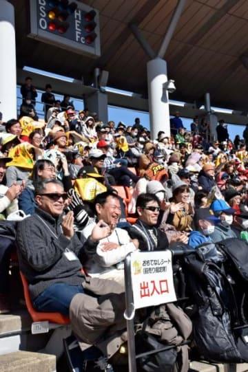 バックネット裏の「おもてなしシート」で紅白戦を観戦するファン=17日午後 宮崎市・アイビースタジアム